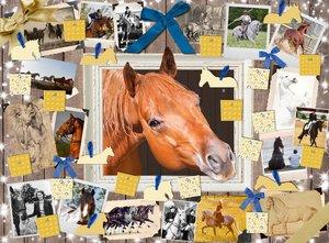 Pferde - Der Adventskalender