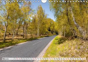 Nordjütland - die Spitze Dänemarks (Wandkalender 2019 DIN A4 que