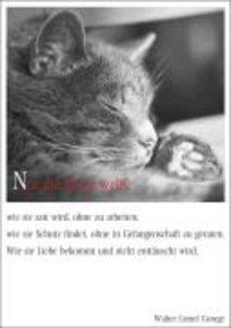 Literarische KatzenKarten