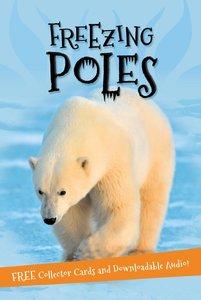 Freezing Poles