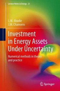 Investment in Energy Assets Under Uncertainty