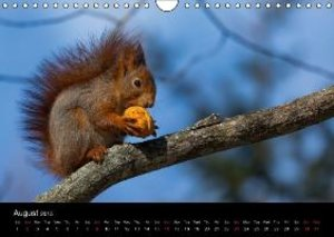 Tschope, F: Wildlife Calendar / UK-Version