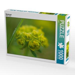 Steinkraut 1000 Teile Puzzle quer