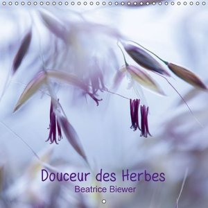 Douceur des Herbes (Calendrier mural 2015 300 × 300 mm Square)