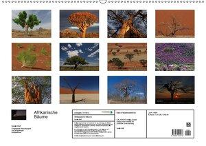 Afrikanische Bäume