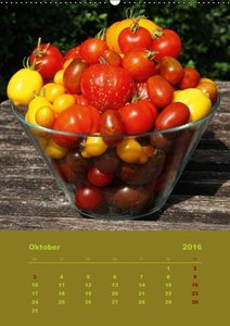Tomaten - Alles BIO! (Wandkalender 2016 DIN A2 hoch)