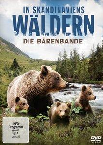 In Scandinaviens Wäldern-Bärenbande DVD
