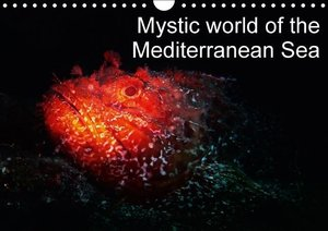 Hampe, G: Mystic World of the Mediterranean Sea / UK-Version