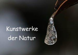 Kunstwerke der Natur (Posterbuch DIN A4 quer)