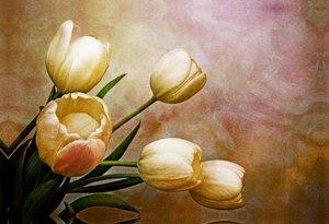 Premium Textil-Leinwand 75 cm x 50 cm quer romantic spring