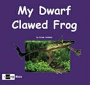 My Dwarf Clawed Frog