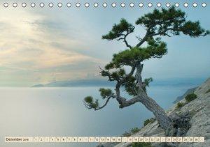 Ukrainische Schönheiten (Tischkalender 2016 DIN A5 quer)