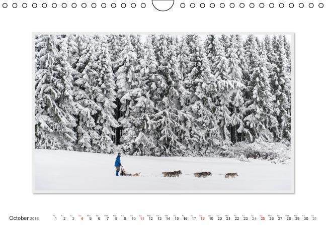Emotional Moments: The Art of Huskys. UK-Version (Wall Calendar - zum Schließen ins Bild klicken
