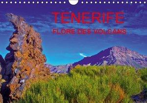 TENERIFE FLORE DES VOLCANS (Calendrier mural 2015 DIN A4 horizon