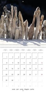 Nature and Art (Wall Calendar 2015 300 × 300 mm Square)