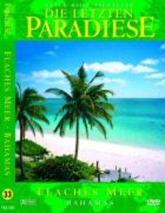 Flaches Meer-Bahamas