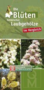 Die Blüten heimischer und kultivierter Laubgehölze im Vergleich