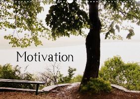 Motivational Quotes Driamond: Dream Ambition Motivation (Wall Ca - zum Schließen ins Bild klicken