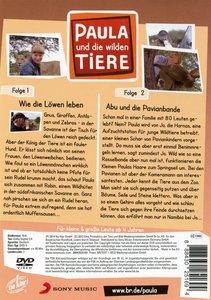 Paula und die wilden Tiere 08: Wie Löwe leben / Abu und die Pavi
