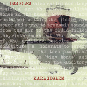 Ossicles (LP)