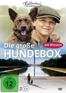 Die große Hundebox