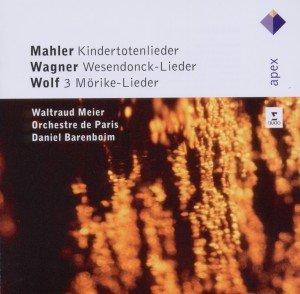 Kindertotenlieder/Wesendoncklieder/Mörike-Lieder