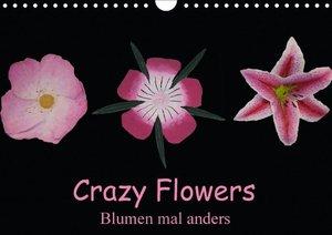 Crazy Flowers - Blumen mal anders