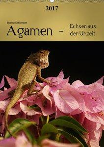 Agamen - Echsen aus der UrzeitCH-Version