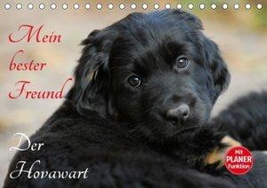Mein bester Freund - Der Hovawart