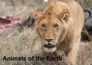 Brack, R: Animals of the Earth / UK-Version