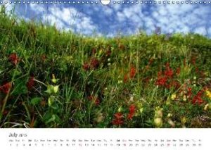 NORTHERN NORWAY - LOW SPEED! (Wall Calendar 2015 DIN A3 Landscap