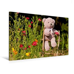 Premium Textil-Leinwand 120 cm x 80 cm quer Kletterbär im Garten