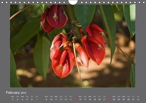 Flowers of Madeira - UK Version (Wall Calendar 2015 DIN A4 Lands