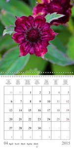 Marvellous Orkney Islands (Wall Calendar 2015 300 × 300 mm Squar
