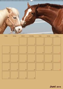 Pferde Gute Freunde (Wandkalender 2016 DIN A2 hoch)