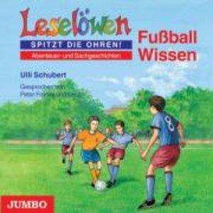 Leselöwen: Fußball Wissen