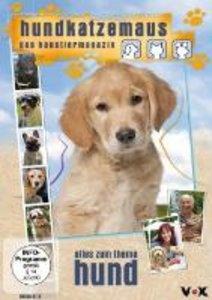 hundkatzemaus-Alles Zum Thema Hund