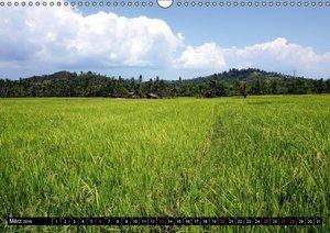 Kontrastreiche Philippinen (Wandkalender 2016 DIN A3 quer)