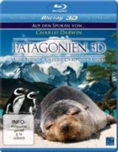 Patagonien 3D - Auf den Spuren von Charles Darwin Von Buenos Air