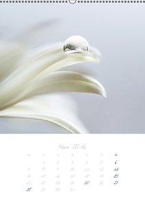 Wasser - Quell des Lebens (Wandkalender 2016 DIN A2 hoch)