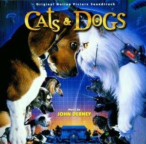 Cats & Dogs-Wie Hund und Kat