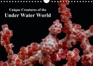 Unique Creatures of the Under Water World (Wall Calendar 2015 DI
