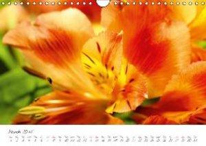 Charming Blossoms / 2015 (Wall Calendar 2015 DIN A4 Landscape)