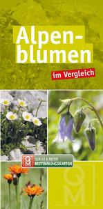 Alpenblumen im Vergleich