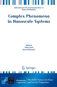 Complex Phenomena in Nanoscale Systems