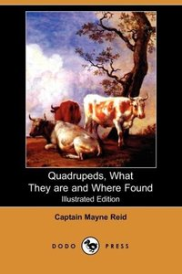 Quadrupeds, What They Are and Where Found (Illustrated Edition)