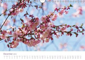 Flowers Dreams - UK Version (Wall Calendar 2015 DIN A4 Landscape