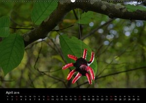 Die Welt der Fruchtgummis (Wandkalender 2016 DIN A2 quer)