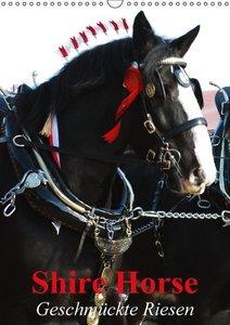 Shire Horse - Geschmückte Riesen (Wandkalender 2016 DIN A3 hoch)