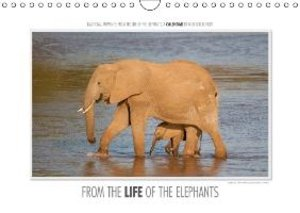 Gerlach, I: Emotional Moments: From the Life of the Elephant